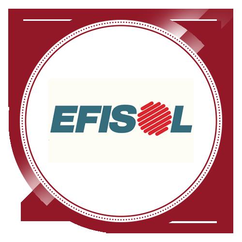 Efisol